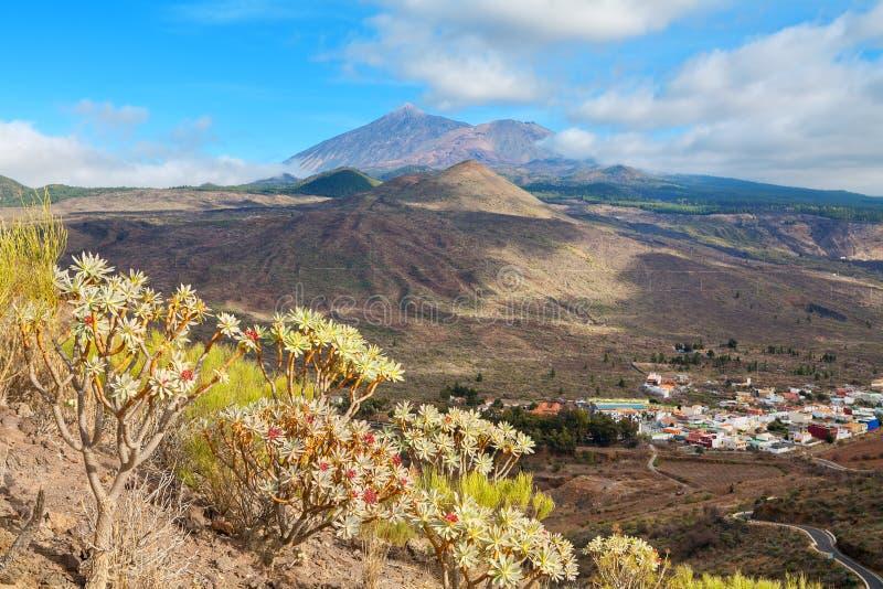 Landschaft von Teneriffa. Spanien lizenzfreies stockfoto