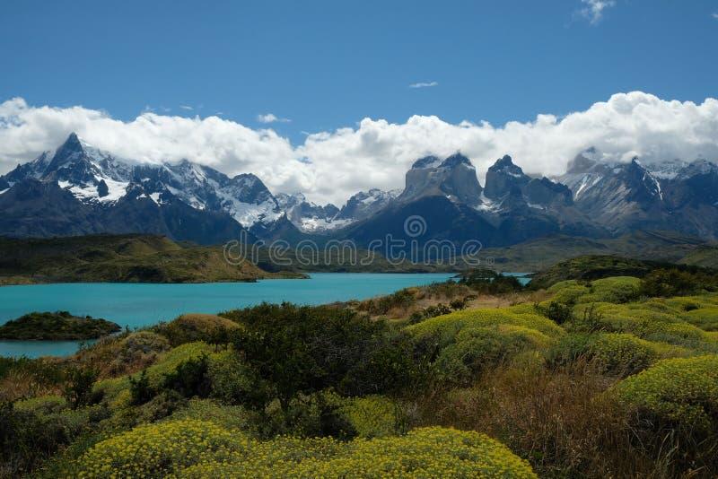 Landschaft von Torres Del Paine, Patagonia, Chile stockfotos