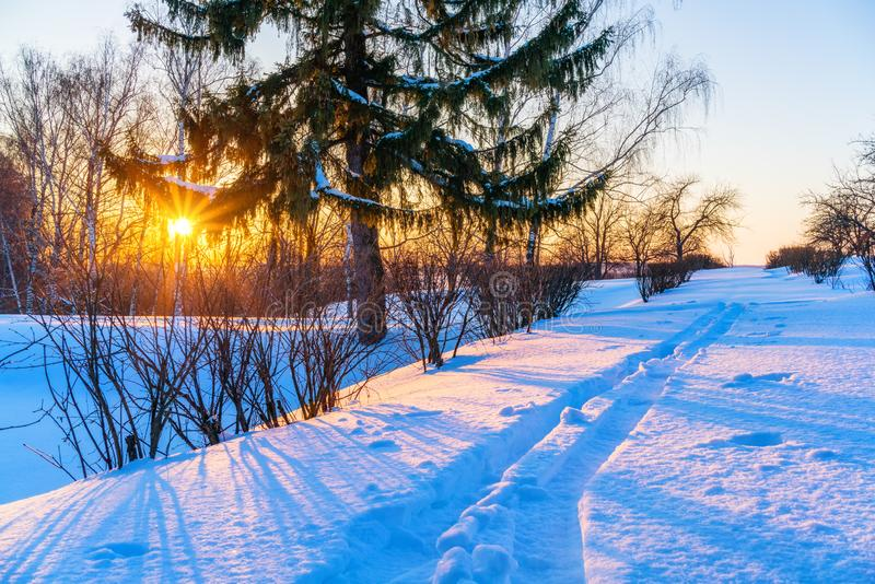 Landschaft am Winter lizenzfreie stockbilder