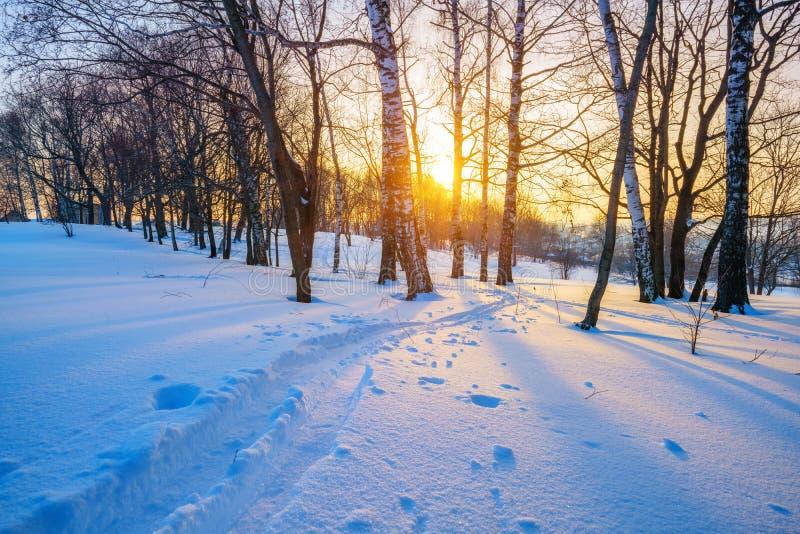 Landschaft am Winter stockfotografie