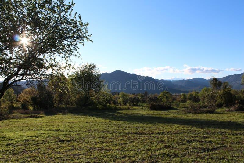 Download Landschaften stockbild. Bild von frieden, grün, baum - 90226159