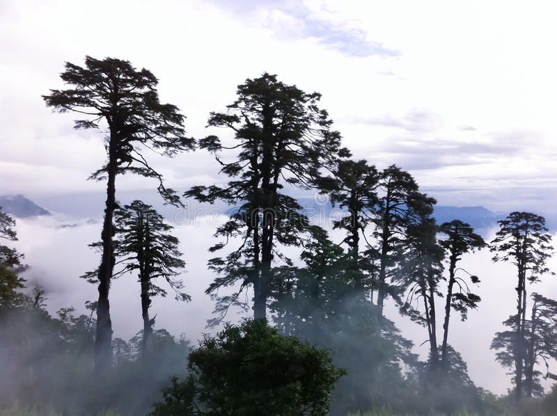 Landschaften in Bhutan lizenzfreies stockbild