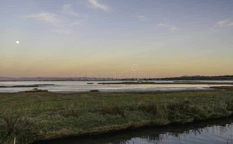 Landschaften natürlicher Reserve Diaccia Botrona stockfotografie