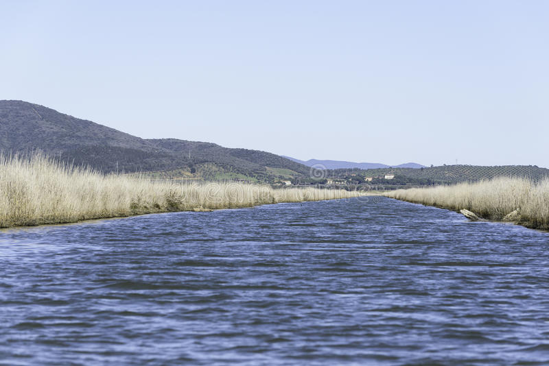 Landschaften natürlicher Reserve Diaccia Botrona stockfoto