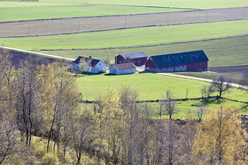 Landschaftfrühlingslandschaften lizenzfreies stockfoto