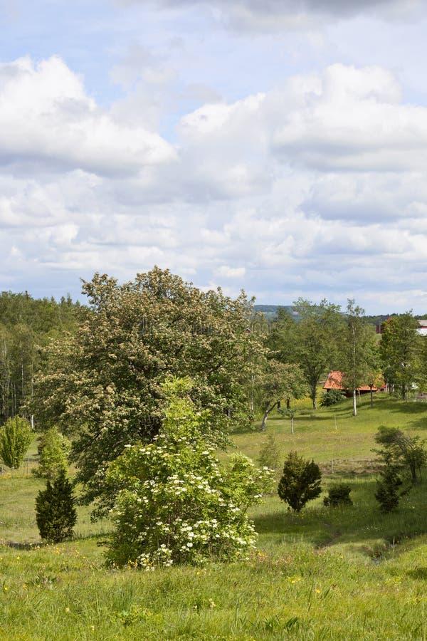 Landschaftlandschaft lizenzfreie stockbilder