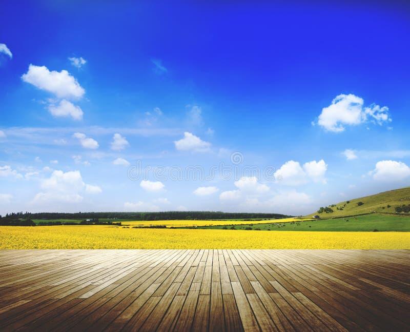 Landschafts-Ansicht-ruhige Natur-schönes Bauernhof-Konzept lizenzfreie stockfotos