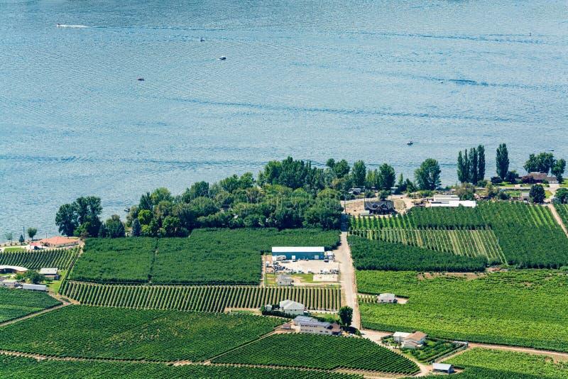 Landschafts?berblick mit dem Haus des Landwirts am Okanagan See am sonnigen Sommertag lizenzfreie stockbilder
