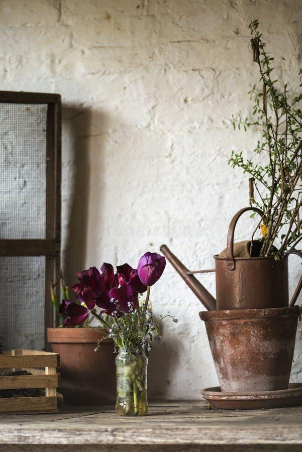 Landschafts-Garten Potting der schönen alten Weinlese verschüttete englischer herein lizenzfreies stockbild