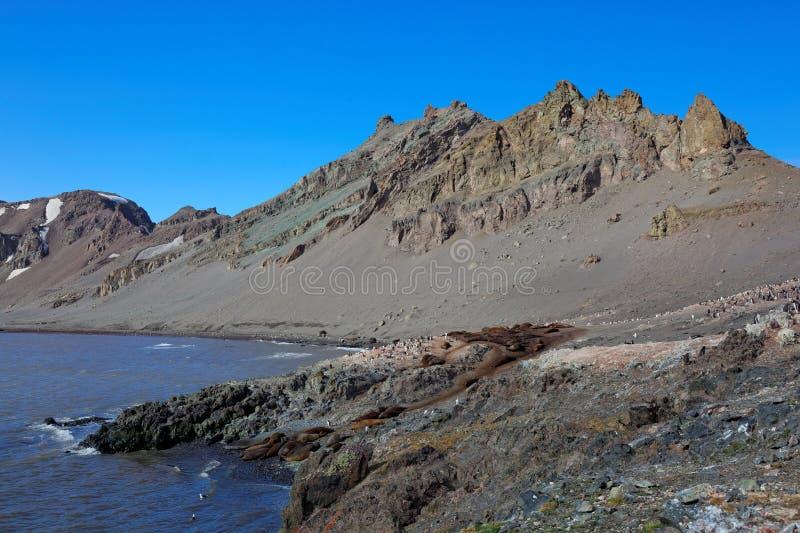 Landschafts-Südshetland-inseln, die Antarktis stockfotografie