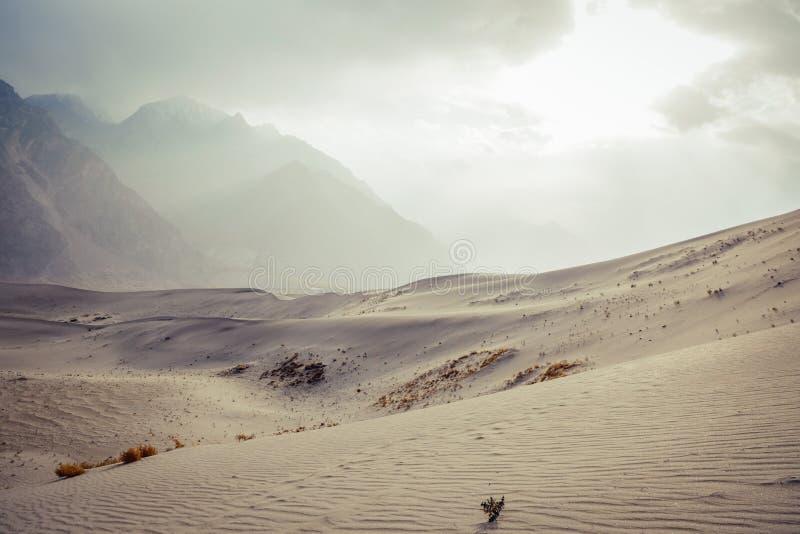 Landschaftsansicht der Wüste gegen Schnee bedeckte Gebirgszug und bewölkten Himmel mit einer Kappe lizenzfreie stockfotos