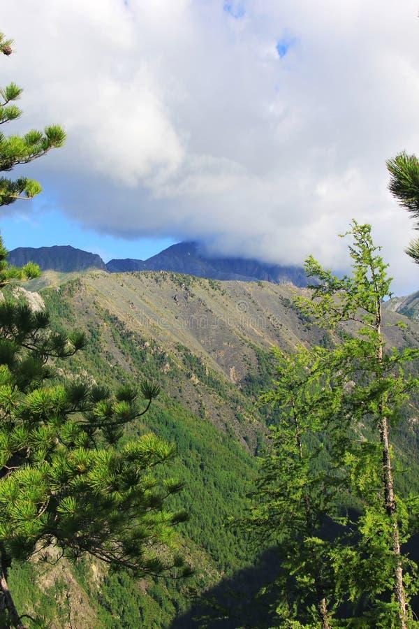 Landschaftsansicht Rocky Mountainss lizenzfreies stockbild