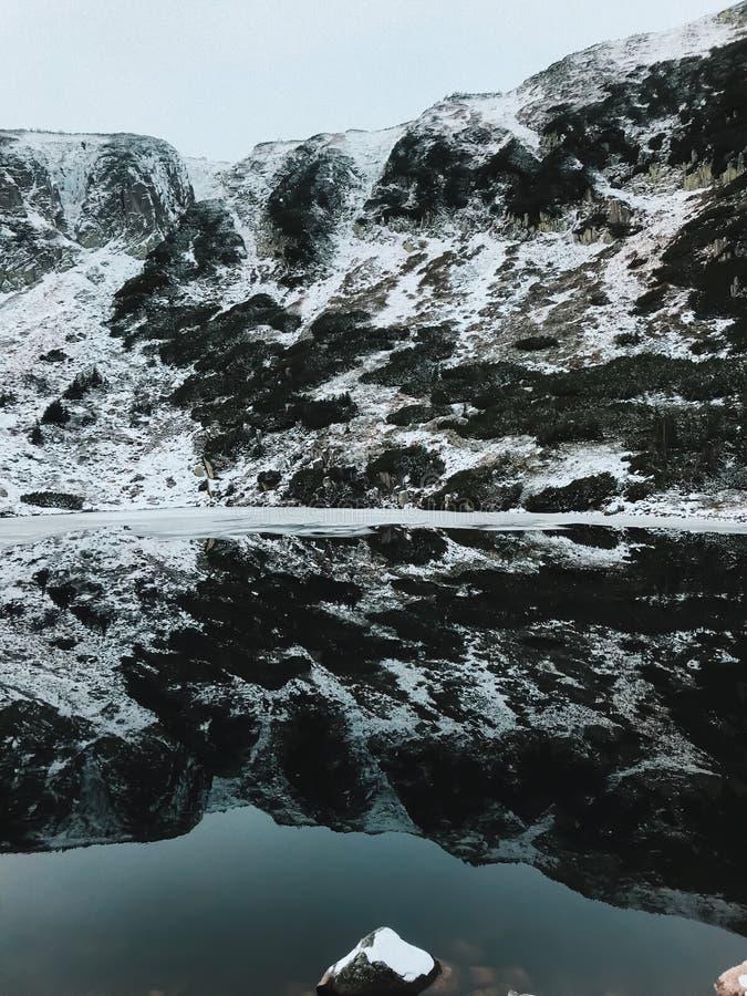 Landschaftsansicht von schneebedeckten Spezies in Karpacz während eines Schneesturmes und eines Blizzards Ansicht des Schneewalde lizenzfreies stockfoto