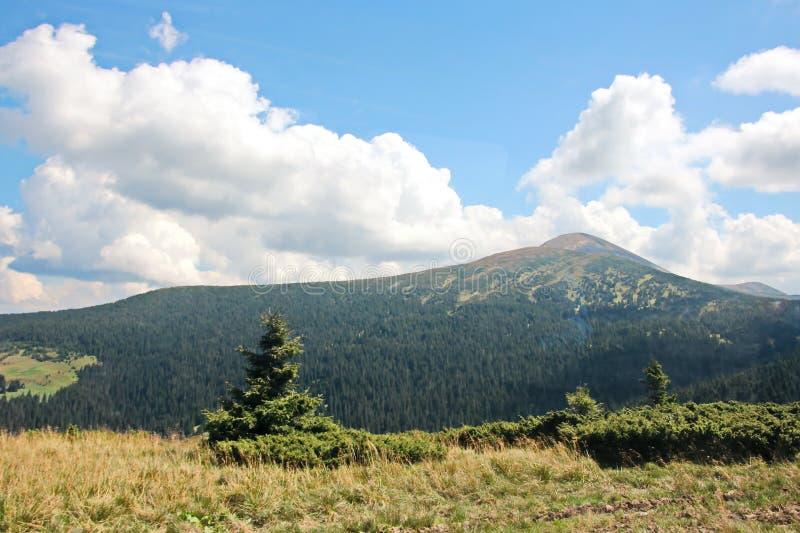 Landschaftsansichten der Berge der Karpaten, Ukraine stockfotografie