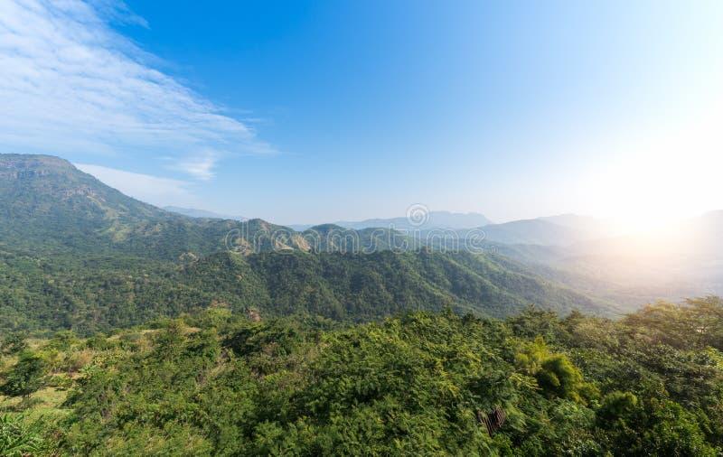 Landschaftsberg mit Wald und Sonnenlicht lizenzfreies stockfoto
