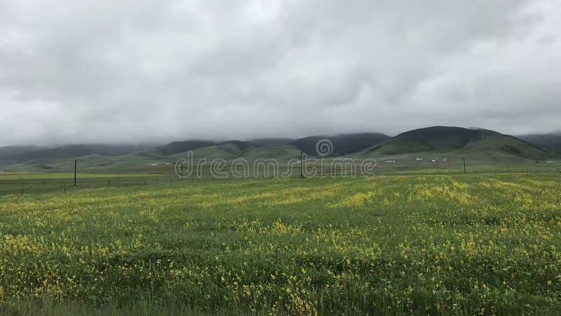 Landschaftsbild der entfernten Ansicht lizenzfreies stockfoto