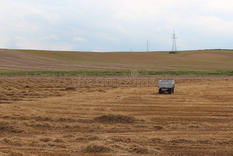 Landschaftsfeldwiese nach Ernte lizenzfreie stockbilder