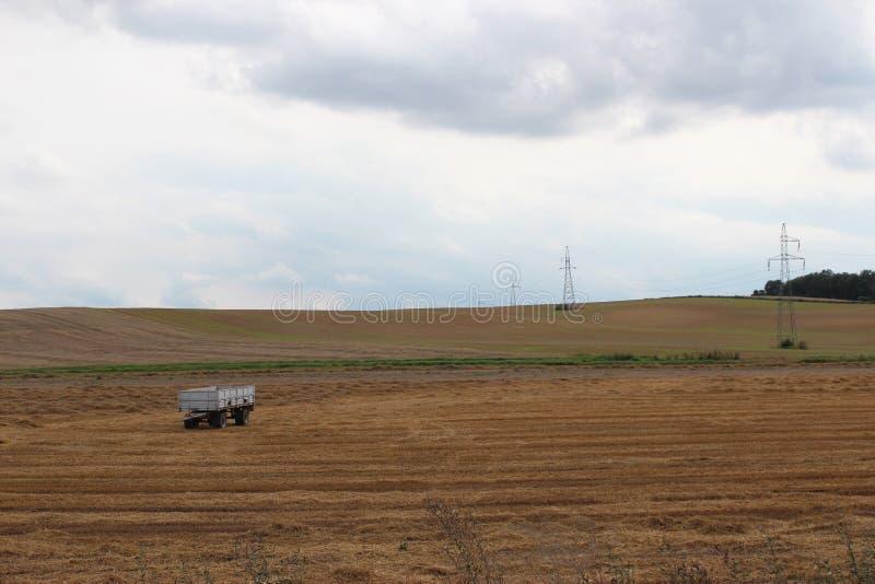 Landschaftsfeldwiese nach Ernte stockfoto