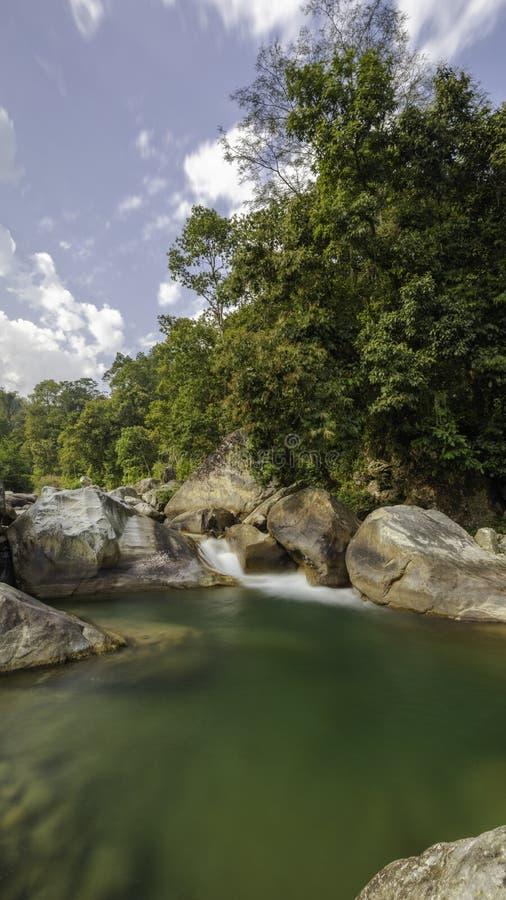 Landschaftsfluß und -bäume im ländlichen Gebiet stockfotografie