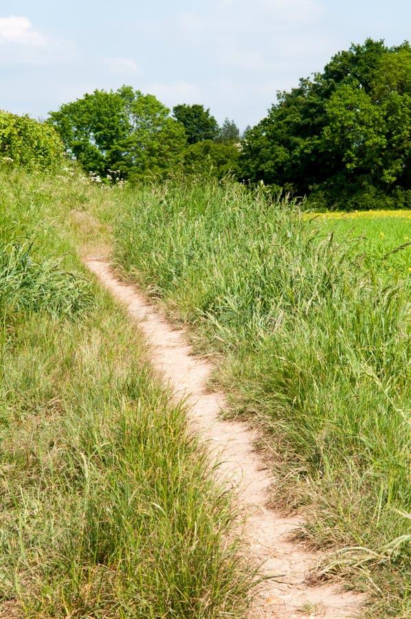 Landschaftsfußweg an einem Weitwinkel lizenzfreie stockbilder