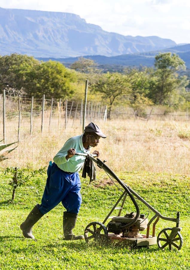 Landschaftsgärtner, der in Südafrika arbeitet lizenzfreie stockbilder