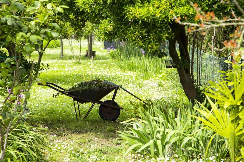 Landschaftsgärtnerei, Schubkarre mit Gartenarbeitwerkzeugen in einem grünen ländlichen Garten lizenzfreie stockfotografie