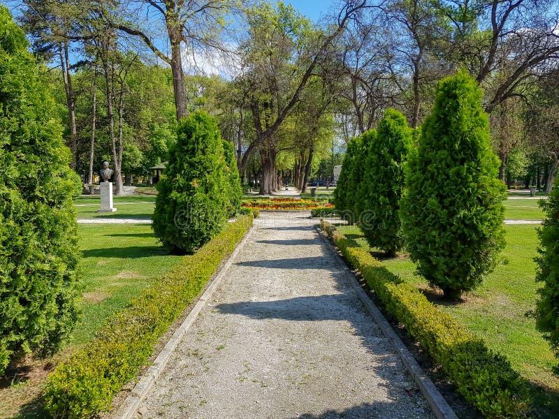 Landschaftsgestaltung des dekorativen Designs Raws von Bäumen im Stadtpark mit Bahnen stockfoto