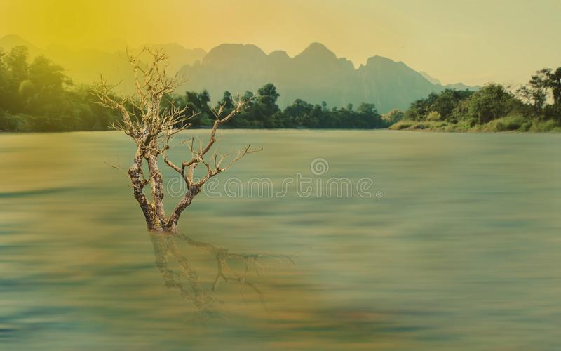 Landschaftsgroßer trockener Baum auf Fluss lizenzfreies stockbild