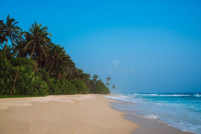 Landschaftsküstenlinie ist- ein gelber sandiger Strand mit weichem Sand, leichte blaue Meereswellen Entlang der Küste wachsen Sie stockfotografie