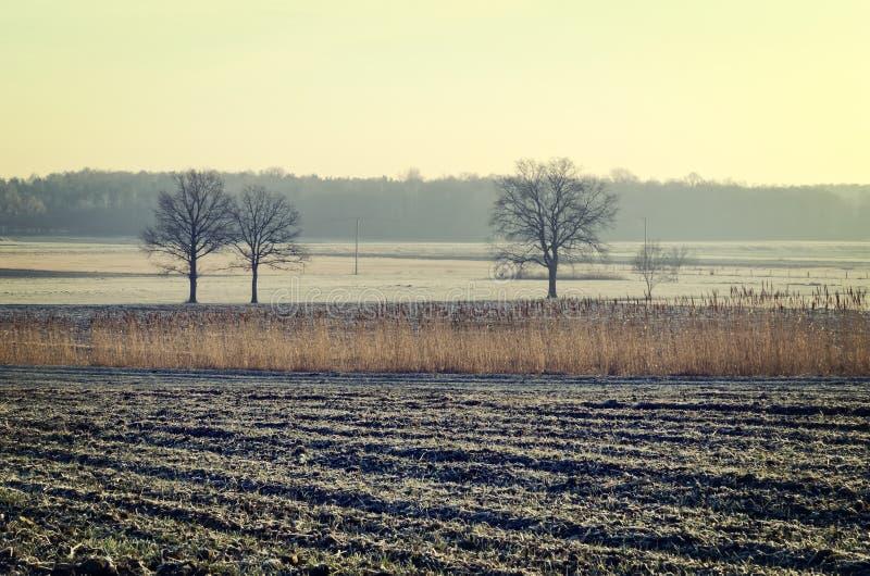 Landschaftslandschaft am frühen Morgen stockbild