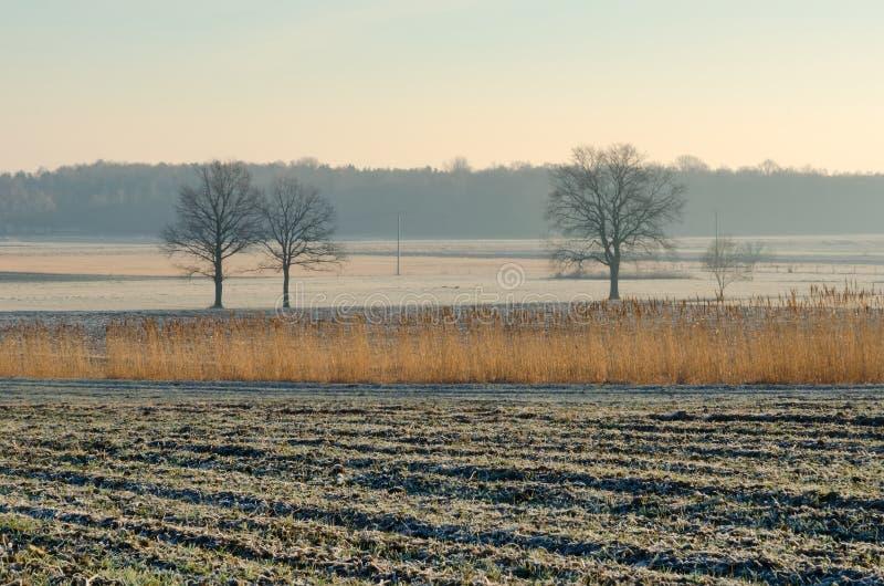 Landschaftslandschaft am frühen Morgen lizenzfreies stockbild