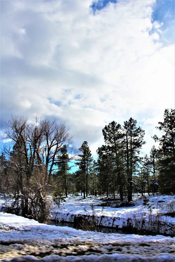 Landschaftslandschaft, zwischenstaatliche 17, Fahnenmast nach Phoenix, Arizona, Vereinigte Staaten stockbild