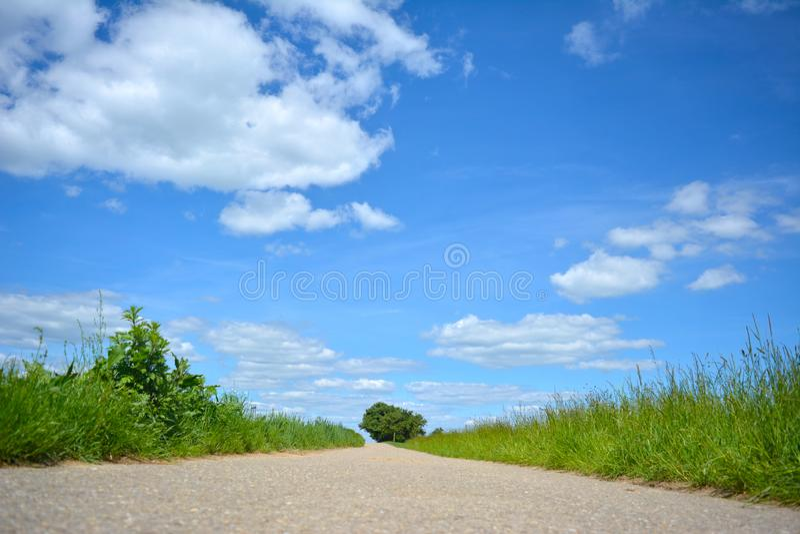 Landschaftsszene an einem sonnigen Sommertag mit klarem blauem Himmel und einem Weg, der in Richtung zu einem Baum umgeben durch  stockfotografie