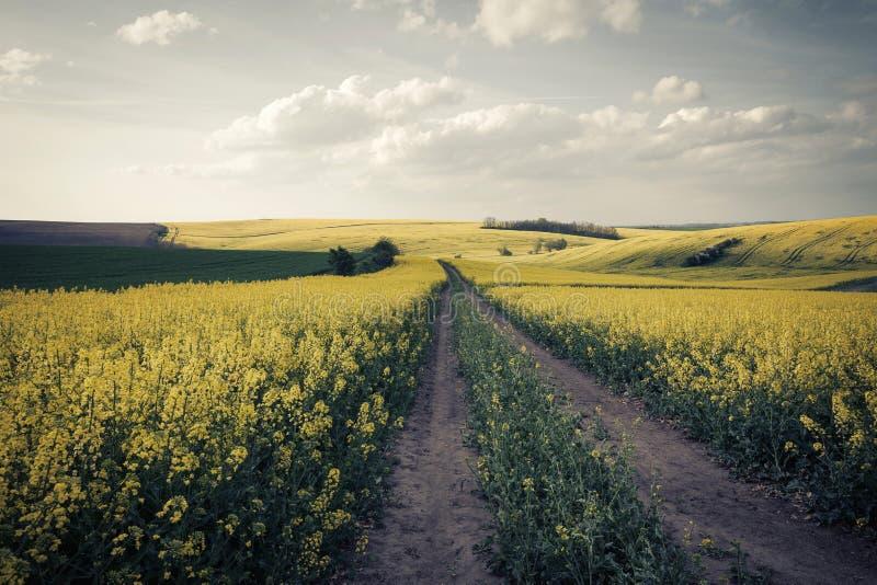 Landschaftsweinleselandschaft lizenzfreie stockbilder