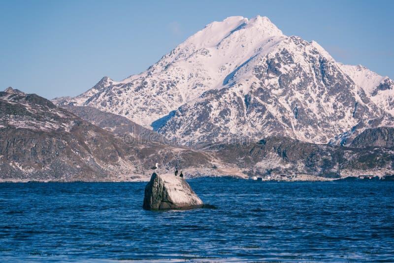 Landschaftswinterlandschaft im Norwegen, wilde Nordnatur, Lofoten-Inseln, Napp, Flakstad stockfotografie