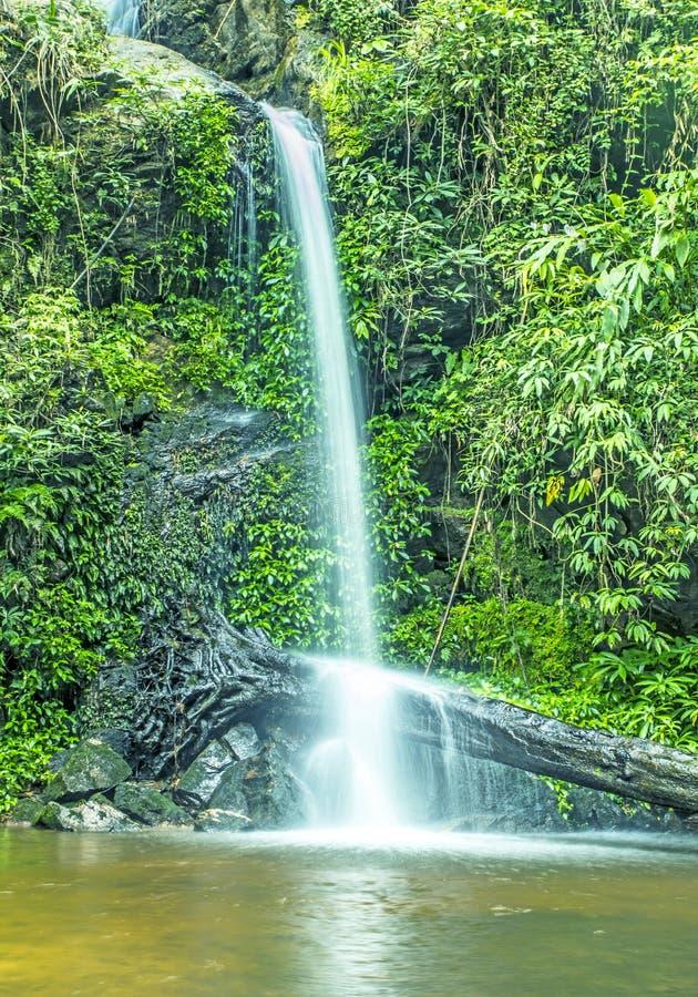 Landschaftwasserfallhintergrund Naturschönheitszusammenfassung lizenzfreies stockfoto