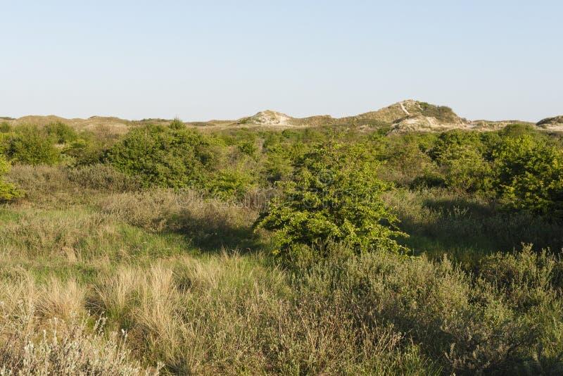 Landschap操作斯希蒙尼克岛,在斯希蒙尼克岛的风景 库存图片