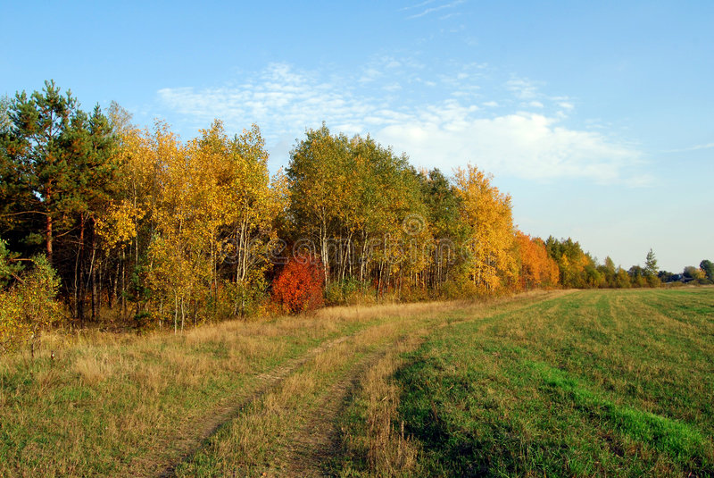 Landschap 2 van de herfst stock fotografie