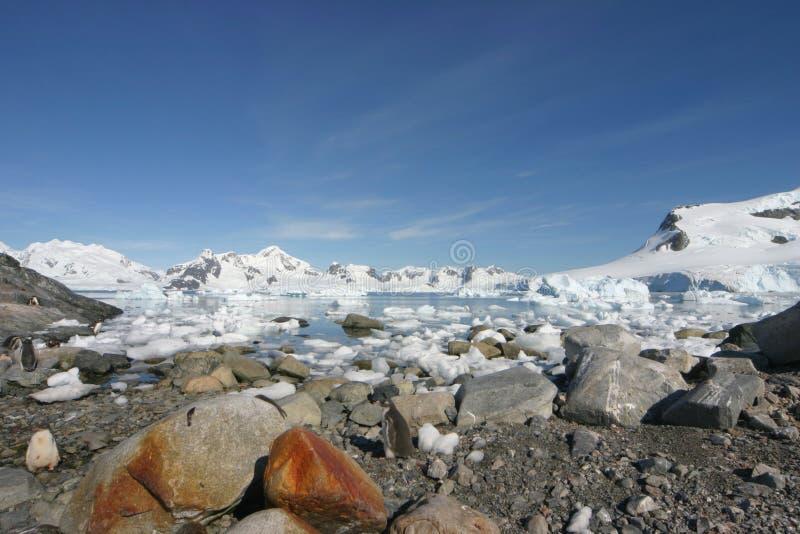 Landschap in Antarctica stock afbeelding