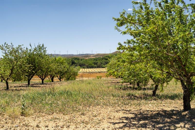 Landschap in Aragon bij de zomer royalty-vrije stock afbeeldingen
