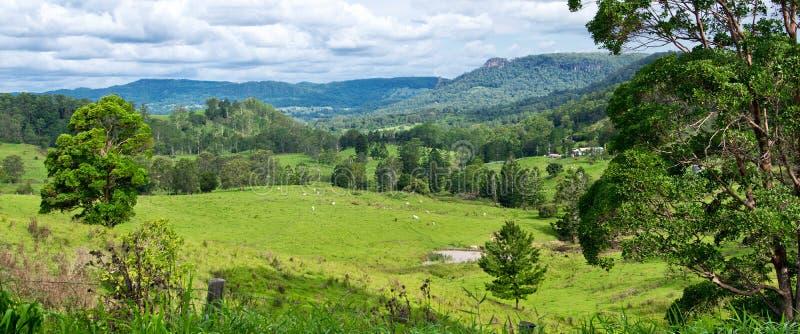 Landschap in Australiër royalty-vrije stock afbeelding