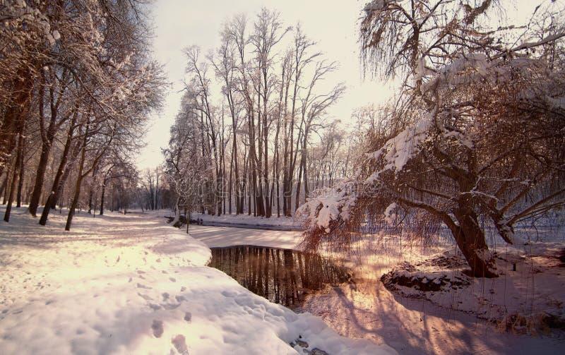 Landschap bevroren rivier dichtbij een bos in de winter Mening van bevroren rivier in park Beek in sneeuwlandschap Kleine rivier  stock fotografie