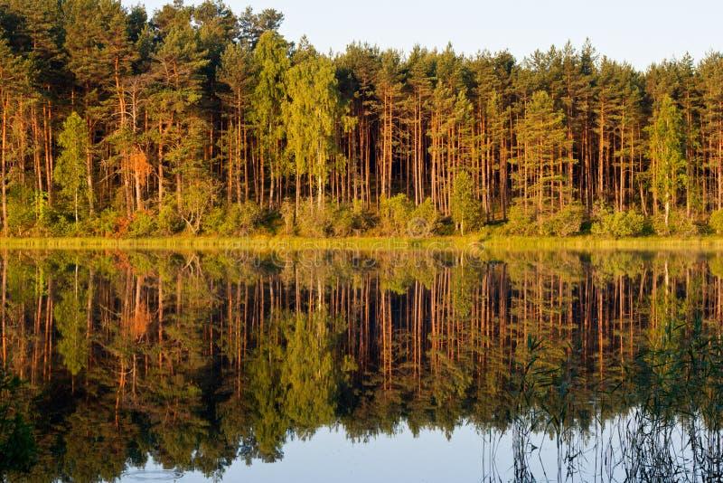 Landschap bij het meer stock afbeelding