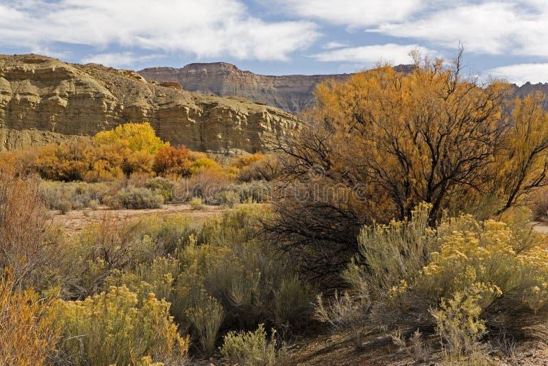 Landschap bij Hoofdertsader Nationaal Park, Utah stock afbeeldingen