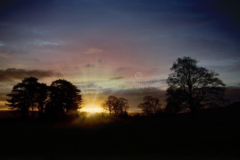 Landschap bij zonsopgang in de winter met bomen op de horizon tegen het licht royalty-vrije stock fotografie