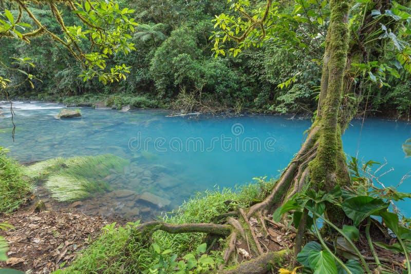Landschap - Blauwe rivier in Costa Rica stock fotografie