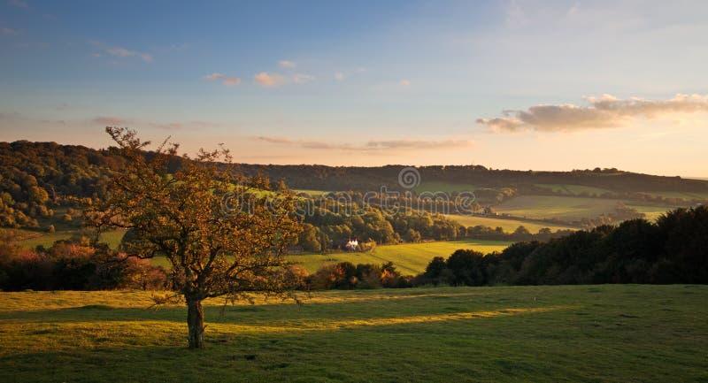 Landschap in Chilterns bij zonsondergang royalty-vrije stock afbeelding
