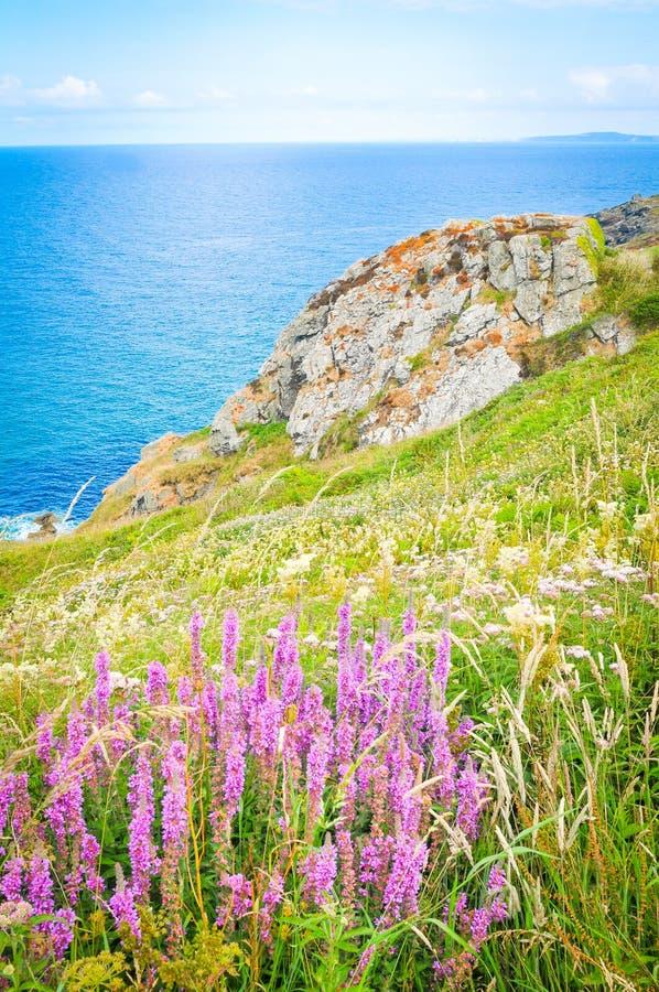 Landschap in Cornwall, Engeland stock afbeelding