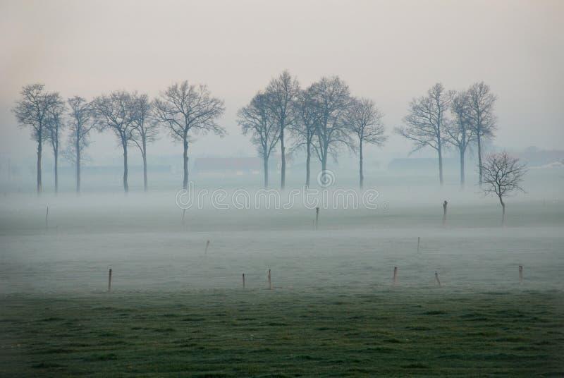 Landschap in de mist royalty-vrije stock afbeelding