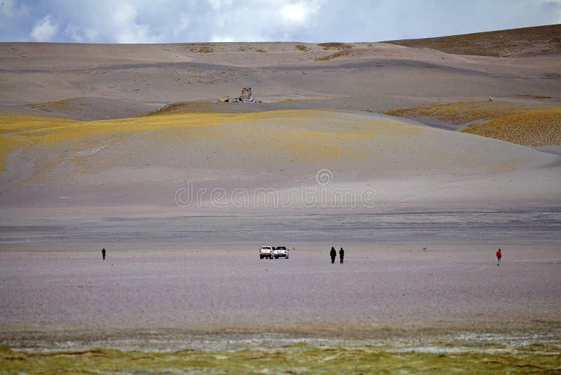 Landschap in de Puna de Atacama, Argentinië stock afbeelding